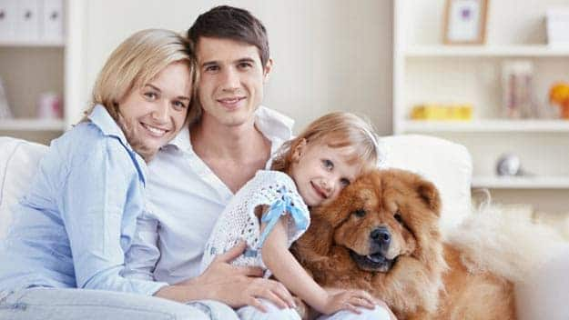 Wills & Trusts dog-young-family Direct Wills Almondsbury